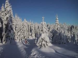 Vinter-stor